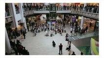 Flashmob - Orchestre national d'Île-de-France