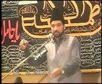 Allama Ali Nasir Tilhara majlis Jalsa 16 mar 2014 shah Allah Ditta Islamabad
