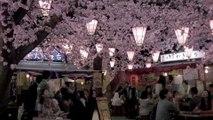 00282 kirin lager beverages - Komasharu - Japanese Commercial