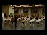 La Danse, le ballet de l'Opéra de Paris (2009)
