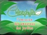 Chlorophylle épisode 88 sur Télé Doller