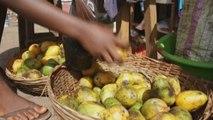 Sierra Leone, Ebola: 5 morts, 15 cas confirmés