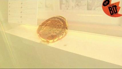 teaser exposition au musée des Beaux arts - Médailler de Lyon