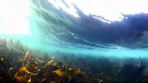 Ireland's Wild Atlantic Way – Mullaghmore Head, Co. Sligo - Wild Atlantic Way, Ireland