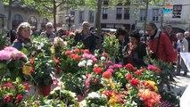 Les villes étapes 2014 : visitez Carcassonne