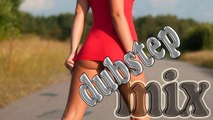 Best Female Vocal Dubstep Mix 2014 (by DYJ)   Dubstep Remix 2014