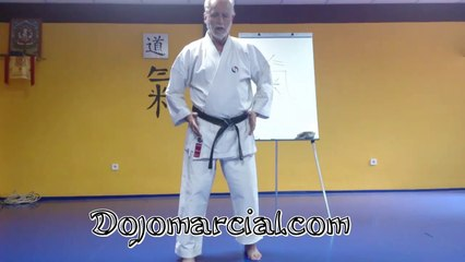 Los 5 elementos o las 10 direcciones (karatedo) - The 5 elements and the 10 directions (karate)
