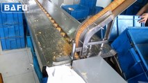 Flow Wrapper, Flow Wrap Machine, Flow Pack Machine, Horizontal Packaging Machine