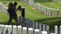 Memorial day flags placed at Arlington