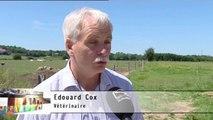 Comment la Province de Hainaut veille à la qualité de notre assiette