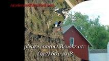 Real estate For Sale In Finger Lakes NY | Finger Lakes NY Real Estate For Sale