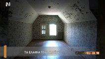 Τατόι: Η συναρπαστική ιστορία του πρώην βασιλικού κτήματος ~ Η Μηχανή του Χρόνου