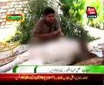 Sehvan - 762 Urs ceremony of Lal Shahbaz Qalandar