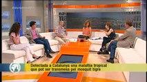 """TV3 - Els Matins - Gascon: """"Hem vist més casos de Chikungunya en un mes que en els últims 4 anys"""""""