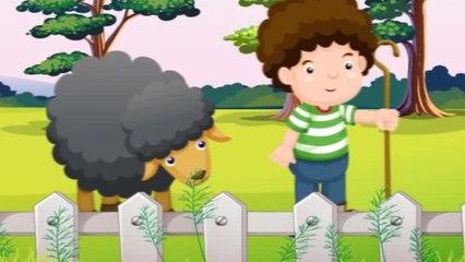 Baa Baa Black Sheep - İngilizce Çocuk Şarkısı
