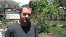 Sprinkler Repair - Customer Review - Kaysville, UT (801) 923-4119