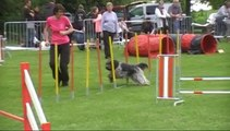 Colchique-St Doulchard-Jumping + 25 mai 2014