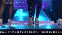 T ara SeeYa Davichi together at Open Concert精選組曲