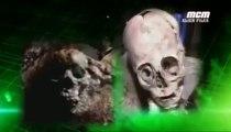 Alien Files 11> Les Extraterrestres sont parmis nous