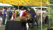 Hautes-Alpes: Fête du miel à champoléon ce dimanche