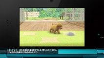 00444 nintendo 3ds nintendogs kazunari ninomiya sho sakurai arashi video games jpop - Komasharu - Japanese Commercial