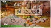 best drug rehab manistee mi