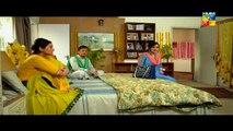 Shab E Zindagi Episode 3 HUM TV Drama