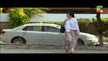 Shab E Zindagi Episode 12 HUM TV Drama