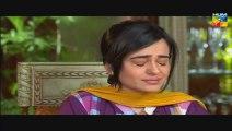 """Shab E Zindagi Episode 22 Full Drama On HUM TV Drama """"24 June 2014"""""""