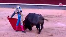 Miguel Angel Perera dos orejas en Madrid 14 Adolfo Martin