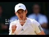 WIMBLEDON Djokovic vs Raonic Live