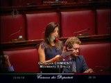 """Silvia Chimienti (M5S): """"Dal governo Renzi vergognosi tagli alla scuola in Piemonte!"""" - MoVimento 5 Stelle"""