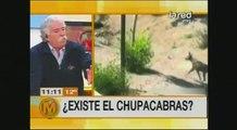 """2013-07-09_Salfate - ¿Nuevo Ataque Del """"Chupacabras""""_1"""