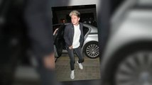 Niall Horan Issues A Twitter Plea After Getting Hit In The Knee By A Fan