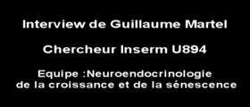 Présentation de Guillaume Martel, Chercheur contractuel Inserm U894