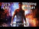 Sleepings dogs#1: expert en art martiaux
