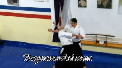 Kokyu Nage - Yoshiaki Yokota Shihan, 7Dan Aikido - Jefe de Instructores de Aikikai Japón - Chief Instructor of Aikikai Japan