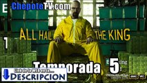 Ver Breaking Bad Temporada 5 Latino