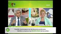Doğal Zayıflama, Mehmet Öz, Yeşil Kahve, Afrika Mangosu, Altın Çilek