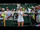 Live Tennis Semifinal Womens P. Kvitova vs L. Safarova Stream