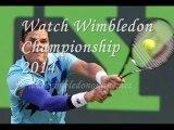 Live men's Singles Quarterfinals Wimbledon 2014 STREAM
