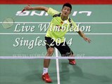 men's Singles Quarterfinals Wimbledon 2014 STREAMING