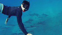 GoPro Swimming With Dolphins - Scuba Diving