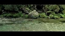 Bande-annonce : Minuscule - La Vallée des Fourmis Perdues - Teaser VF