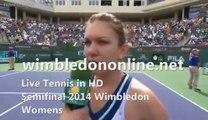 Tennis Semifinal Womens L. Safarova vs P. Kvitova Live