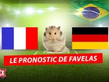 Le pronostic de Favelas le hamster pour France Allemagne !