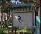 Algerie,Tlemcen,telecom,MSAN news