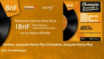 Andrex, Jacques-Henry Rys Orchestra, Jacques-Henry Rys - Zou, le midi bouge