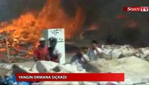Muğla'da yangın ormana sıçradı