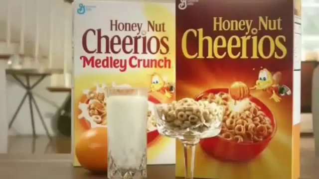 Honey Nut Cheerios – Buzz Meets Grumpy Cat – Must Bee The Honey
